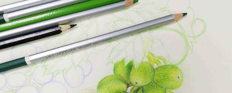 彩铅画用什么笔打基础