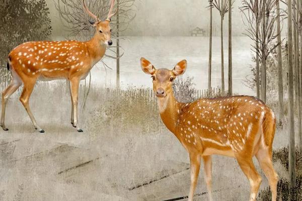 壁画鹿的寓意