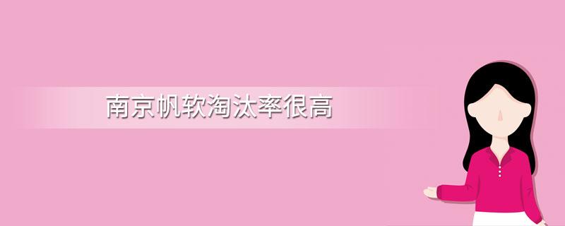南京帆软淘汰率很高