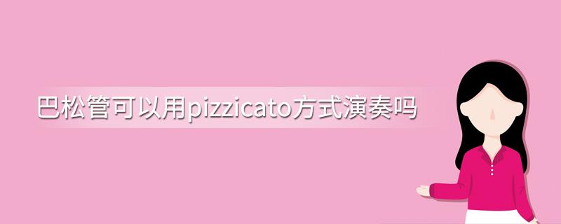 巴松管可以用pizzicato方式演奏吗