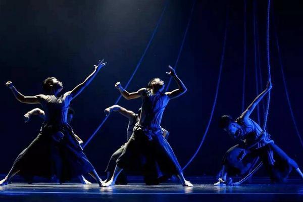 舞蹈艺考都有什么专业