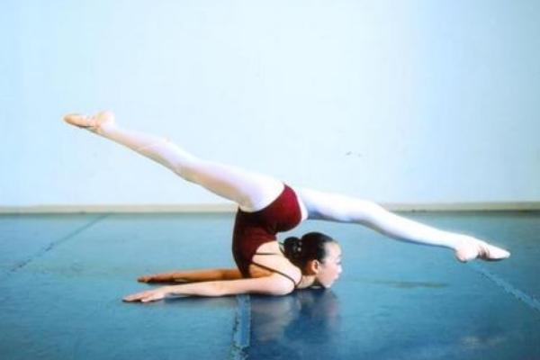 舞蹈基本功的训练目的