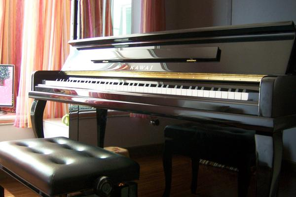 电钢琴和钢琴的区别